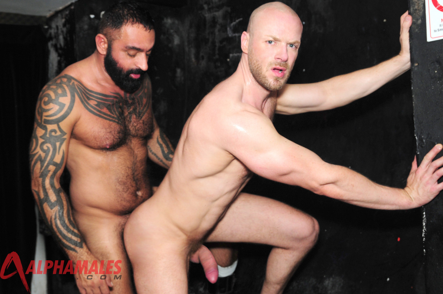 Alphamales Nathan Price and Tom Colt fucking 08 Amateur Tattoo Hairy Muscle Man Fucks a Hot Sex Pig in the Club Toilet