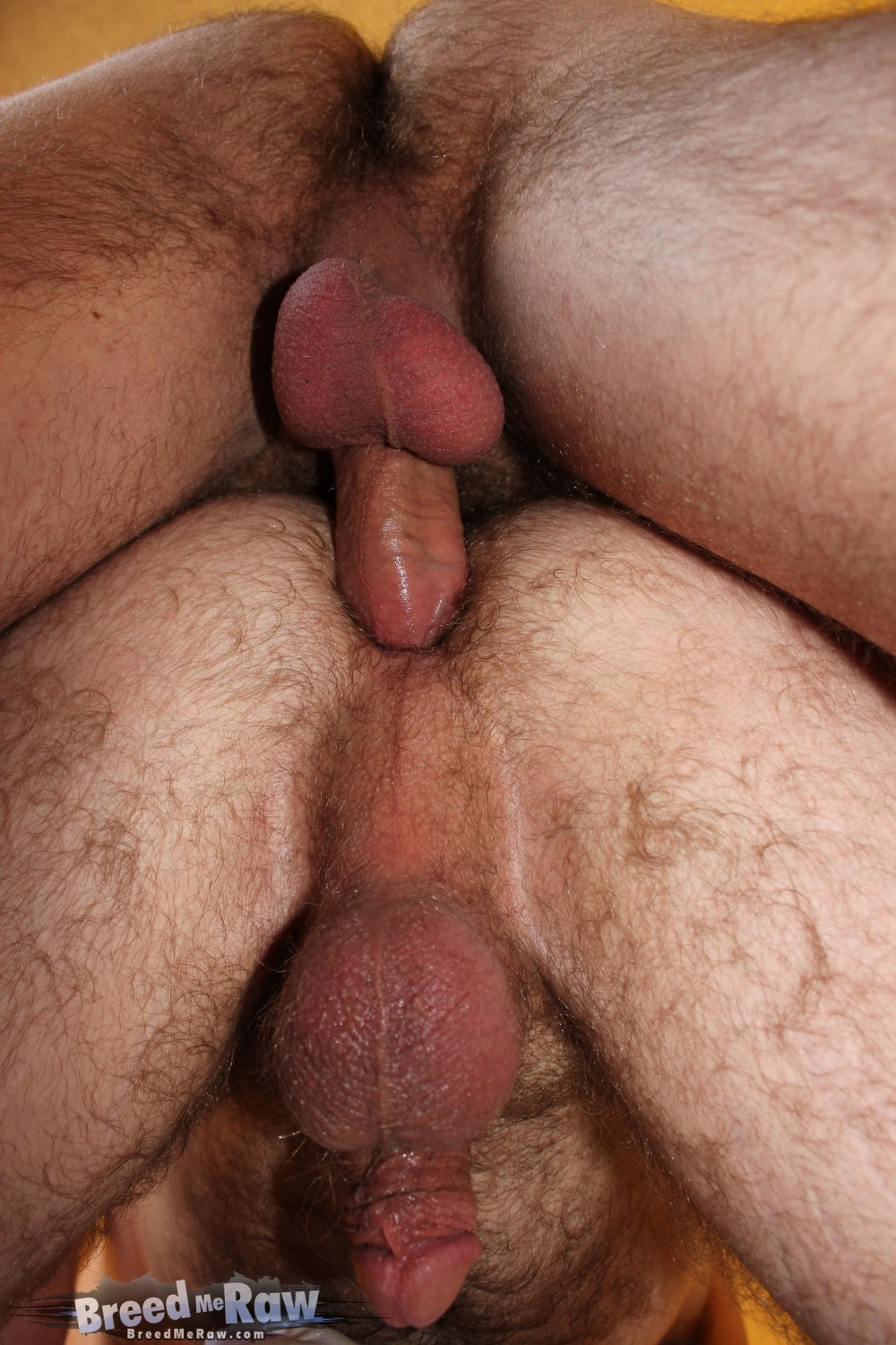 Breed Me Raw Butch Bloom and James Roscoe Bareback Fucking BBBH Big Cock 14 Hairy Hot Amateur Hole Gets Barebacked By A Masculine Hung Cock
