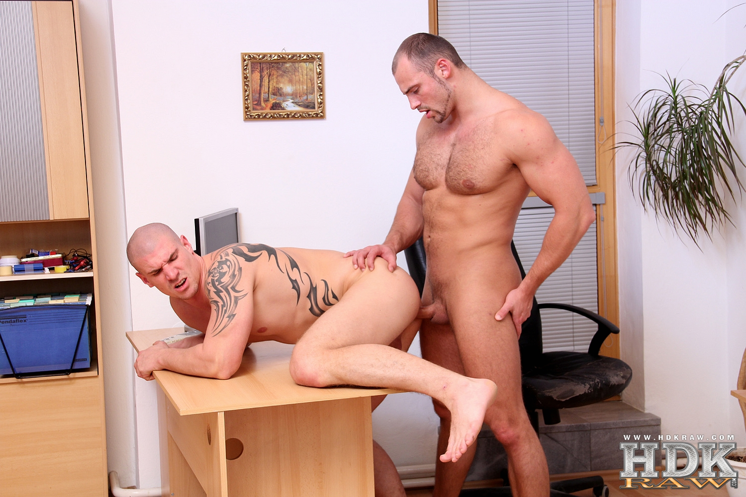 HDK-Raw-Creamin-Fit-Fuckers-Tomm-Max-Born-Muscle-Bareback-Amateur-Gay-Porn-02 Built Hairy Muscle Bear Fucks His Smooth Muscle Buddy Raw