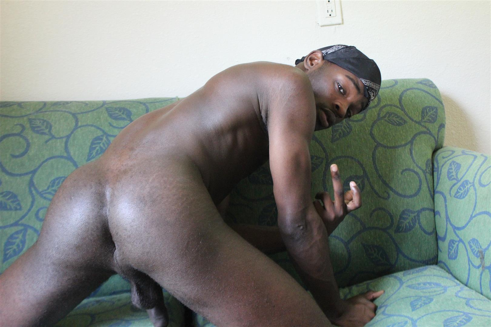 Black gay big dick pictures